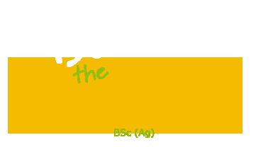 Bob the Beeman